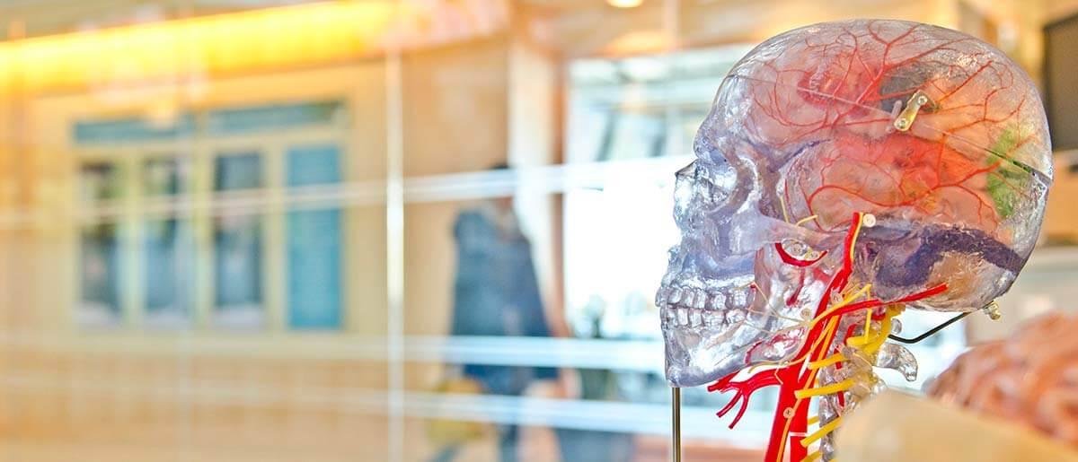 Neurologia Jesolo Medical Care
